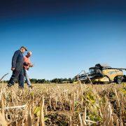Agrii eyes bigger market for UK haricot beans