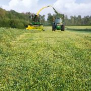 Revitalising grassland can get more from tired leys