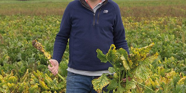 Fenland grower refuses to forget his roots