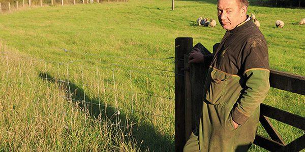 Helmingham Estate: A future where farms can flourish