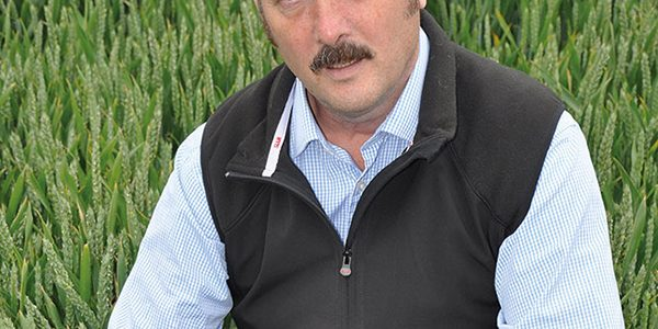 Take T2 action to maximise wheat potential