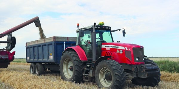 Hybrid rye catches eye of first time growers