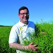 New oilseed rape variety rewrites Clearfield rules