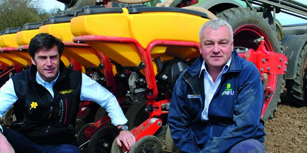 Blended wheats can reduce inputs and combat disease