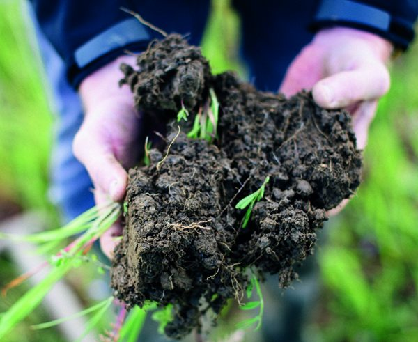 Caution urged over rush to regenerative agriculture
