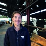 Dairy farmers pay high price for lameness
