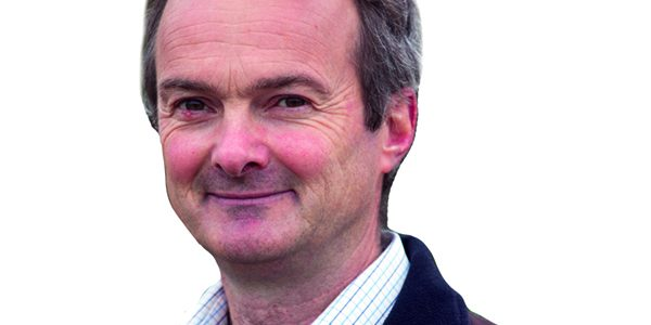 Be clever about post-harvest cultivations